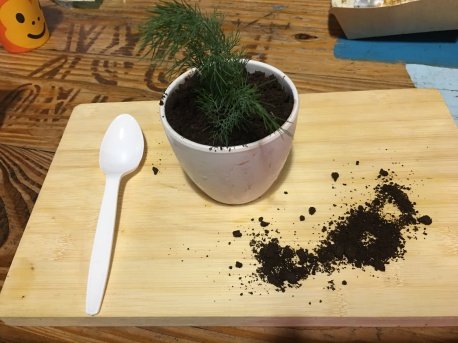 Oreo chocolate dessert (dressed as a potted plant)